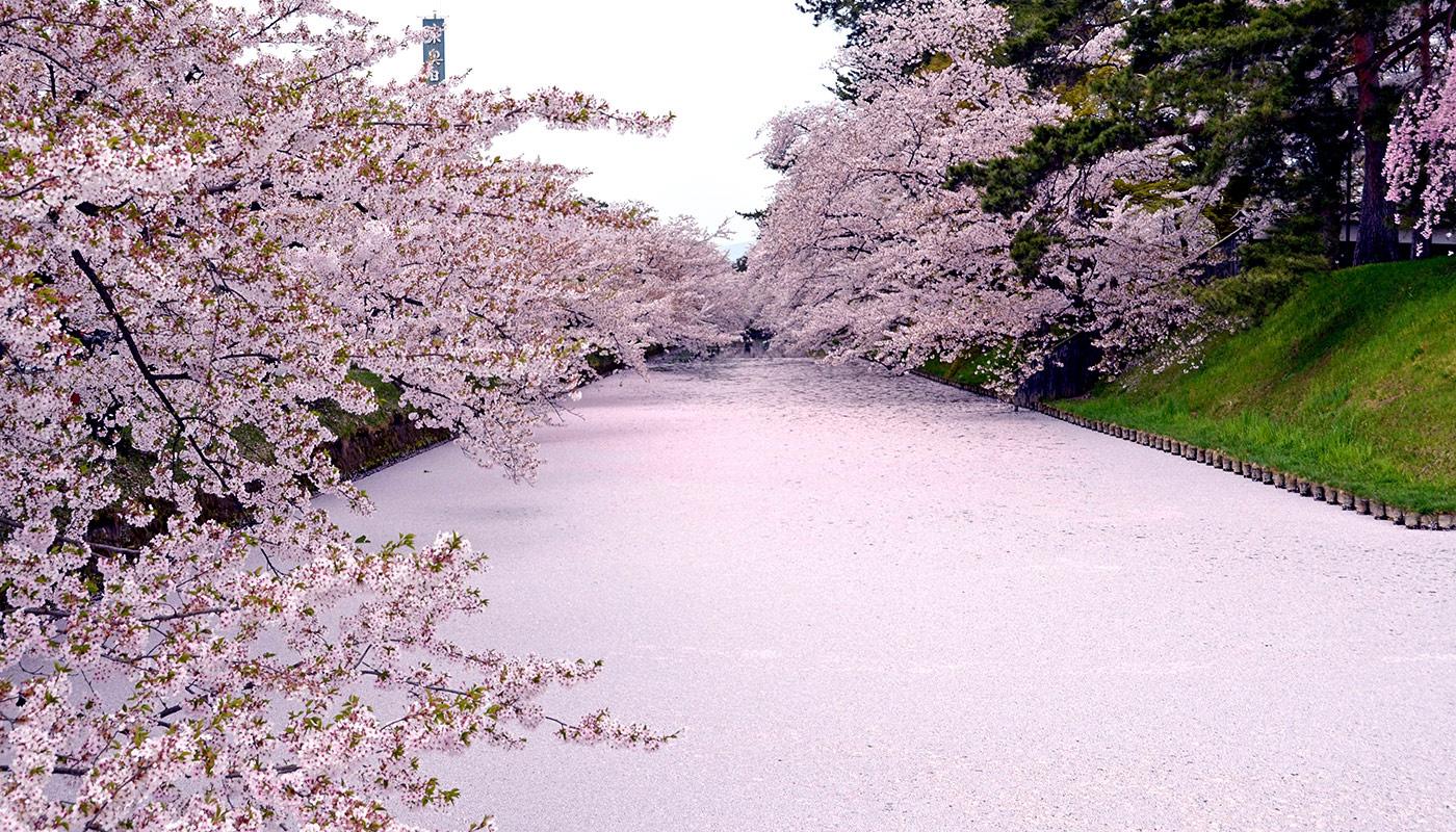 Hirosaki Park in Aomori